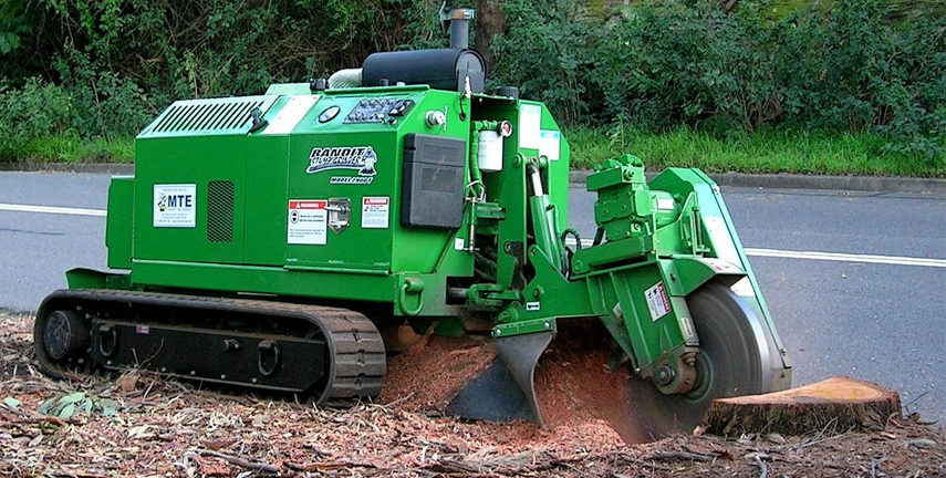 Stump Grinding Walkerville, Tree Trimming Newton, Tree Pruning Hectorville